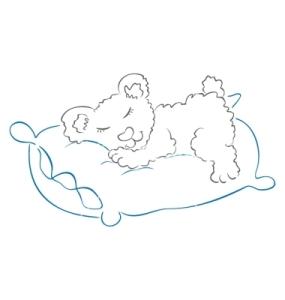 teddy-is-sleeping-vector-583552